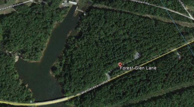 5 & 6 Forest Glen Lane, Abbeville, SC 29620 (MLS #20207499) :: The Powell Group of Keller Williams
