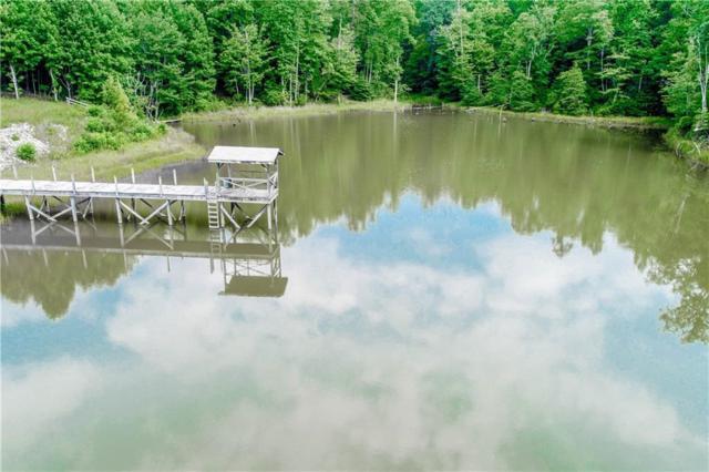 00 Lenore B Lane, Mountain  Rest, SC 29664 (MLS #20208754) :: Les Walden Real Estate