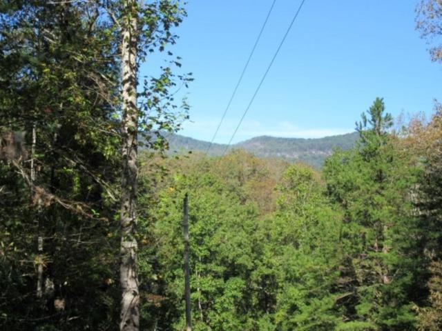 128 Doe Run, Pickens, SC 29671 (MLS #20209087) :: Les Walden Real Estate
