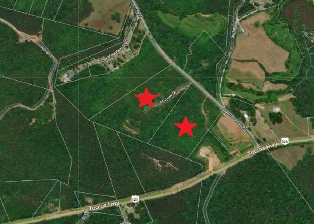 20.84 Acres Cleveland Pike Road, Westminster, SC 29693 (MLS #20209224) :: Tri-County Properties