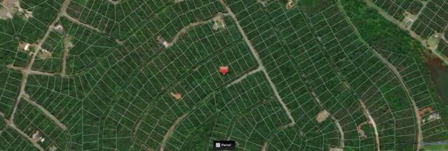 208 Cherrwood Drive, Westminster, SC 29693 (MLS #20209917) :: Tri-County Properties