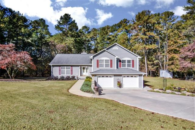 168 Will Owens Drive, Central, SC 29630 (MLS #20209983) :: Tri-County Properties