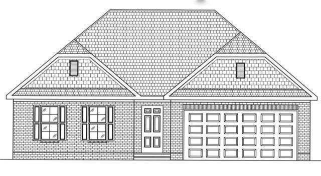 113 Pleasant Hill Drive, Easley, SC 29642 (MLS #20210106) :: Tri-County Properties