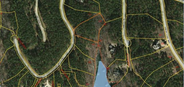 149 Lake Breeze Trail, Six Mile, SC 29682 (MLS #20210574) :: Les Walden Real Estate