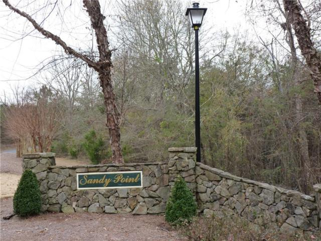 Future Dev Sandy Poi Sandy Point Drive, Anderson, SC 29625 (MLS #20210878) :: The Powell Group