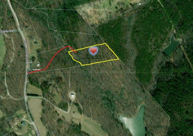 3.11 Acres Pine Mountain Road, Tamassee, SC 29686 (MLS #20211264) :: The Powell Group
