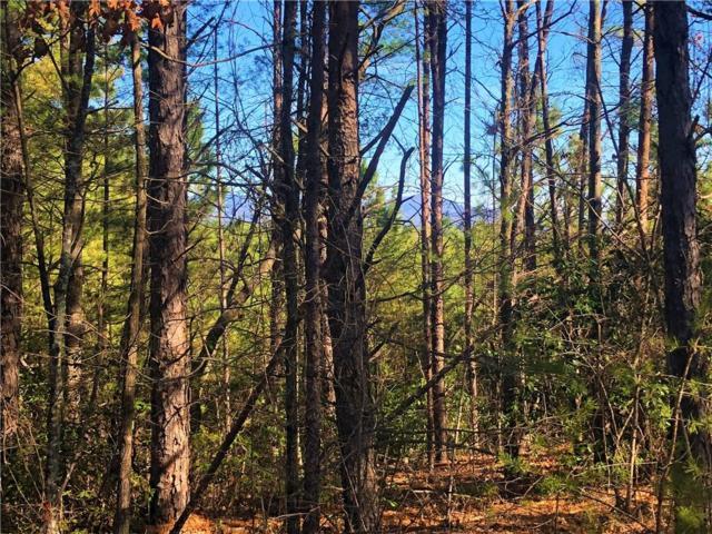 16 Jocassee Ridge Way, Salem, SC 29676 (MLS #20212710) :: The Powell Group