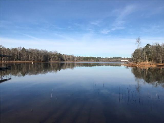 000 York Shores Drive, Hartwell, GA 30643 (#20212780) :: Connie Rice and Partners