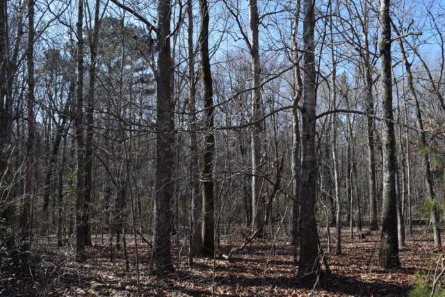 Lot 1 A Kirsch Road, Williamston, SC 29697 (MLS #20212997) :: The Powell Group