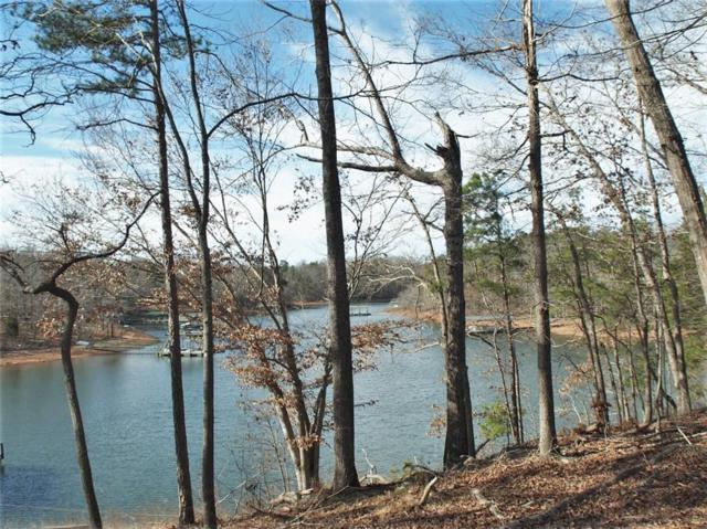 00 Paradise Point Road, Hartwell, GA 30643 (MLS #20213381) :: The Powell Group