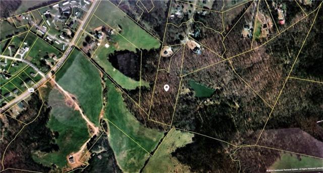 159 N Harper Ridge Drive, Seneca, SC 29678 (MLS #20213447) :: The Powell Group