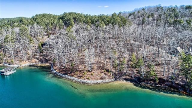 220 Deep Cove Point, Sunset, SC 29685 (MLS #20213475) :: The Powell Group