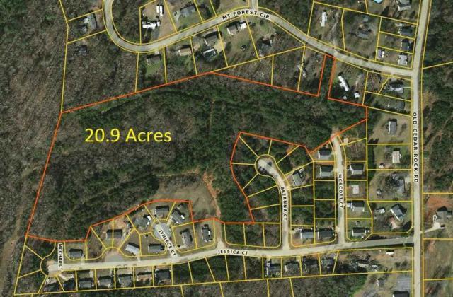 00 Mcscott, Easley, SC 29640 (MLS #20214089) :: Tri-County Properties