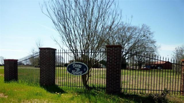 130 Olive Branch, Anderson, SC 29626 (#20214300) :: Connie Rice and Partners