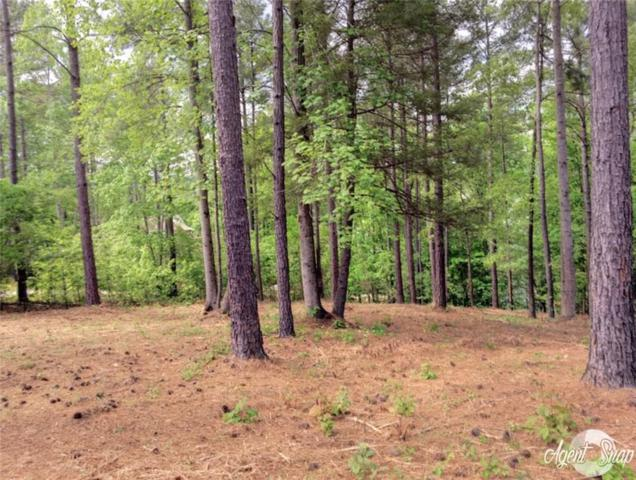 416 Pileated Woodpecker, Sunset, SC 29685 (MLS #20215841) :: The Powell Group