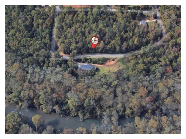 133 Sir Lancelot Drive, Piedmont, SC 29673 (#20216601) :: Connie Rice and Partners