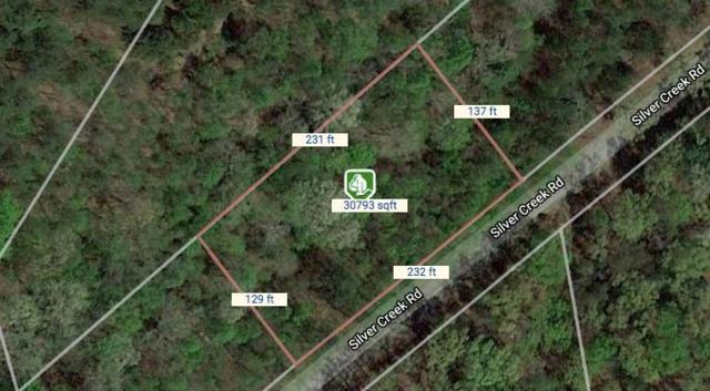 478 Silver Creek Road, Central, SC 29630 (MLS #20217389) :: Tri-County Properties at KW Lake Region