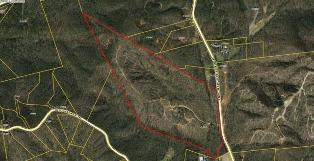 2538 Moorefield Memorial Highway, Pickens, SC 29671 (MLS #20217495) :: Tri-County Properties