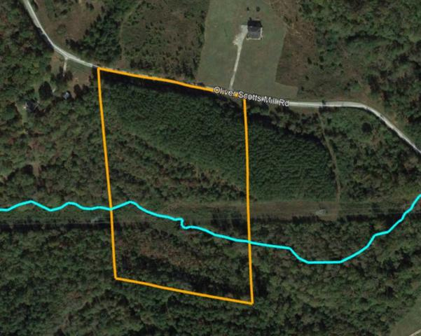 325 Oliver Scotts Mill Road, Honea Path, SC 29654 (MLS #20217976) :: The Powell Group