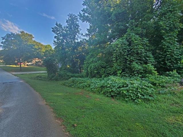 1 Green Forest Circle, Liberty, SC 29657 (#20219564) :: Connie Rice and Partners