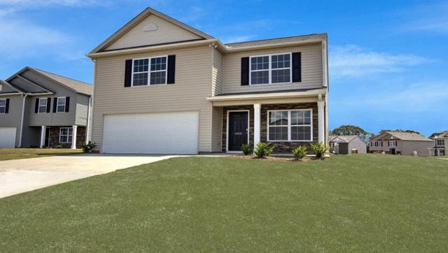 228 Hillendale Way, Pelzer, SC 29669 (MLS #20219878) :: Les Walden Real Estate