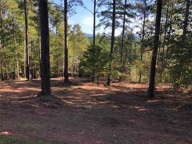 209 Augusta Way, Sunset, SC 29685 (MLS #20221747) :: The Powell Group