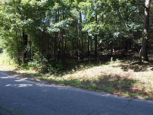 Lot 16 Oak Knoll Drive, Townville, SC 29689 (MLS #20221893) :: The Powell Group