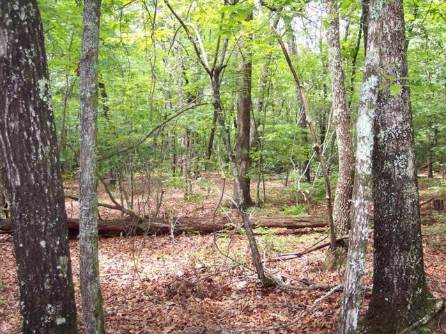 Lot 12B Shepherd Springs Drive, Cleveland, SC 29635 (#20222223) :: Connie Rice and Partners