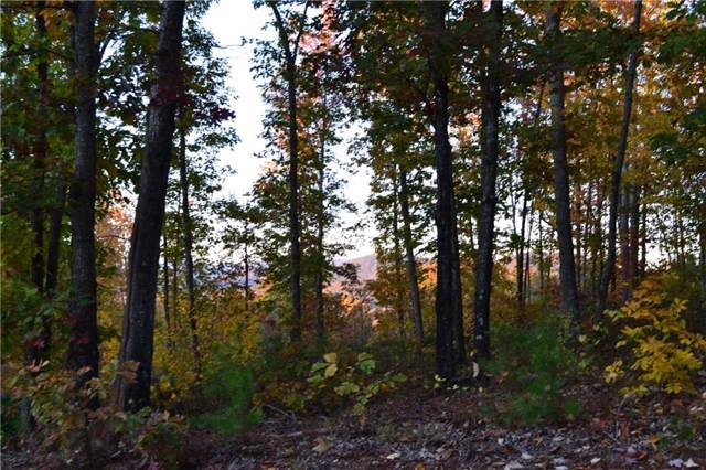 210 Cliffside Trail, Pickens, SC 29671 (MLS #20223064) :: Prime Realty