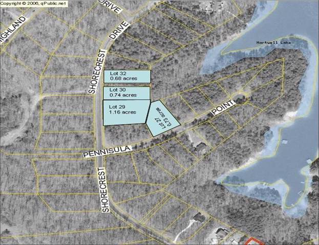 0 Shore Crest Dr And Peninsula Point, Martin, GA 30557 (#20223419) :: Connie Rice and Partners