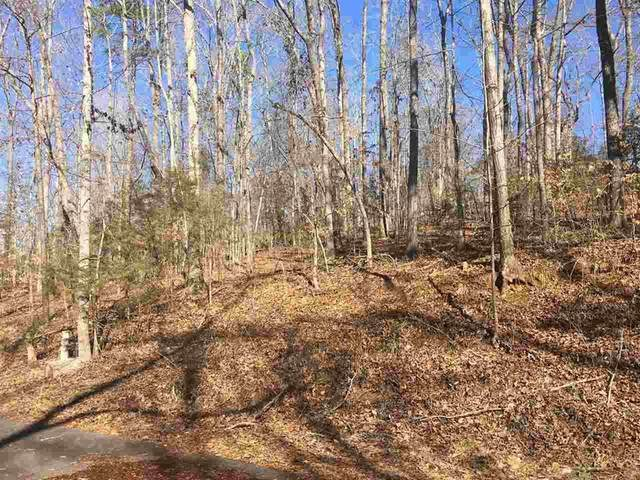 Lot Pin Du Lac Drive, Central, SC 29630 (#20226598) :: DeYoung & Company
