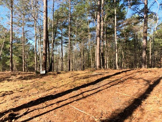 120 Hawks Bay Court, Six Mile, SC 29682 (MLS #20226753) :: Tri-County Properties at KW Lake Region