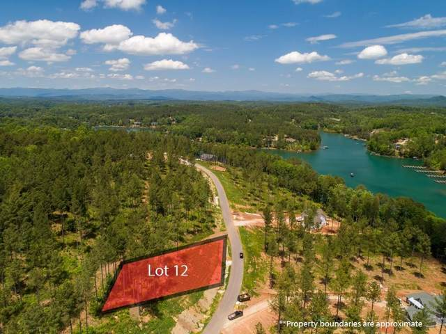 217 Coveside Lane, Six Mile, SC 29682 (MLS #20227839) :: The Powell Group