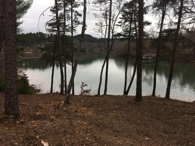 174 Ellenburg Creek, Sunset, SC 29685 (MLS #20228589) :: Tri-County Properties at KW Lake Region