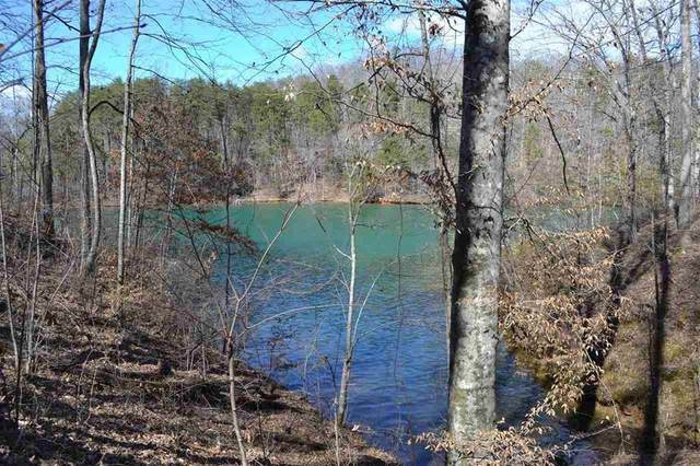 248 Piney Woods Trail, Six Mile, SC 29682 (MLS #20229779) :: Tri-County Properties at KW Lake Region