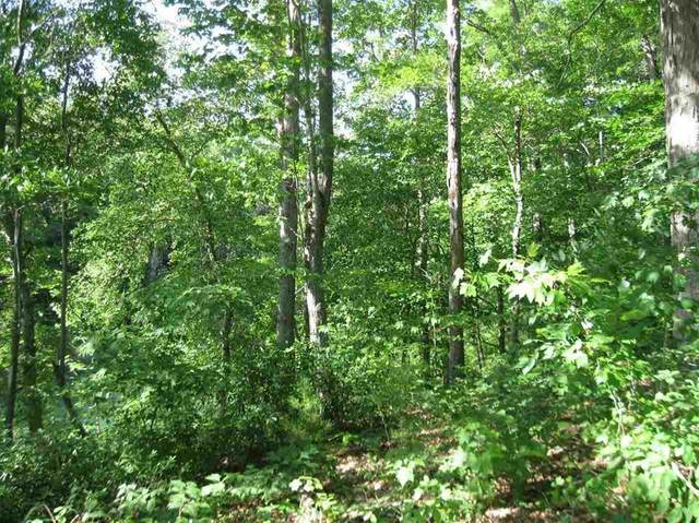 Lot 33C Rigsbee Road, Westminster, SC 29693 (MLS #20229875) :: Les Walden Real Estate