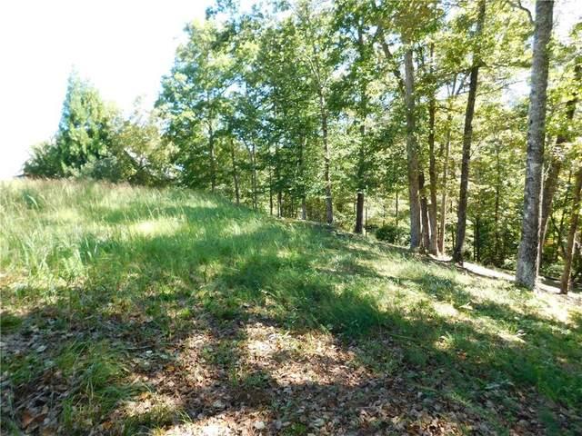 625 River Birch Way, Salem, SC 29676 (MLS #20232866) :: Les Walden Real Estate