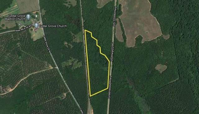 00 S 221 Highway, Waterloo, SC 29384 (MLS #20233321) :: Tri-County Properties at KW Lake Region