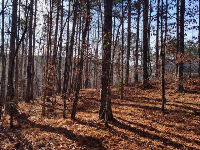Lot 127 Longwood Drive, Seneca, SC 29672 (#20235178) :: J. Michael Manley Team