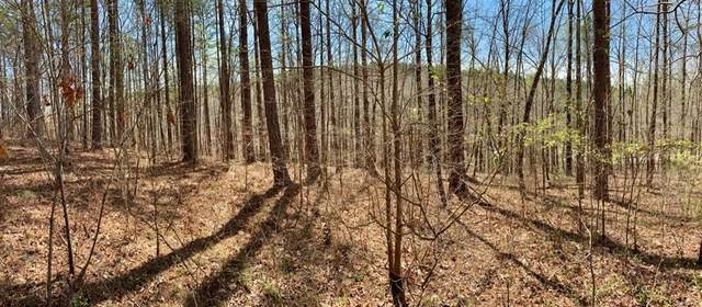 Lot 125 Longwood Drive, Seneca, SC 29672 (MLS #20235560) :: Les Walden Real Estate