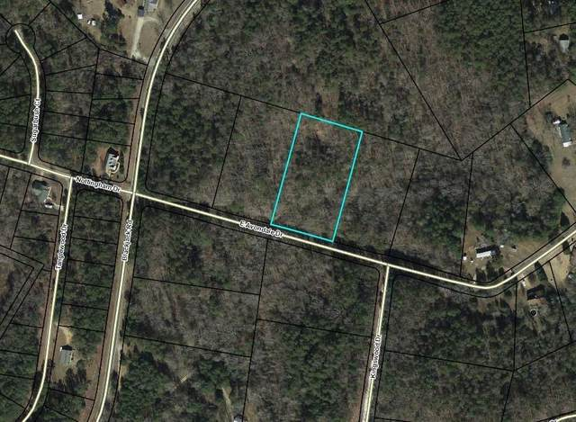 00 East Avondale Drive, Westminster, SC 29693 (#20235694) :: DeYoung & Company