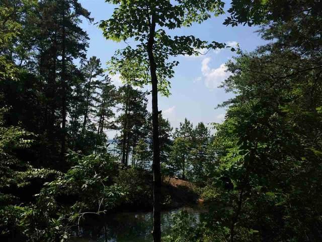 Lot 173 Cane Creek Drive, Seneca, SC 29672 (MLS #20236930) :: Tri-County Properties at KW Lake Region