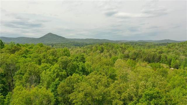 000 Beiman Long Road, Westminster, SC 29693 (MLS #20238832) :: The Powell Group