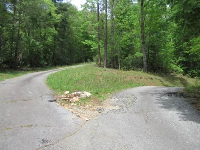 357 Gauley Falls Road, Pickens, SC 29671 (#20238958) :: J. Michael Manley Team