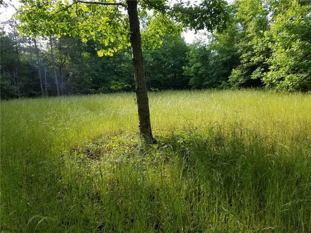 32.61 Acres Rock Hill Road, Fair Play, SC 29643 (MLS #20239631) :: The Powell Group