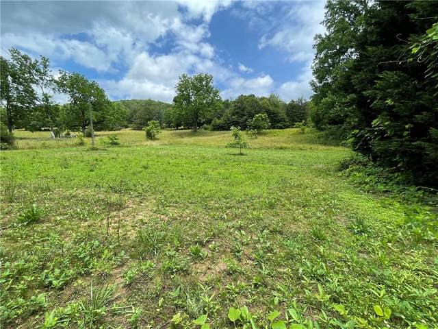 0000 Boundary Drive, Pickens, SC 29671 (MLS #20240228) :: The Powell Group