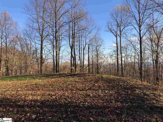 275 Lost Trail Drive, Landrum, SC 29356 (MLS #20240999) :: The Powell Group