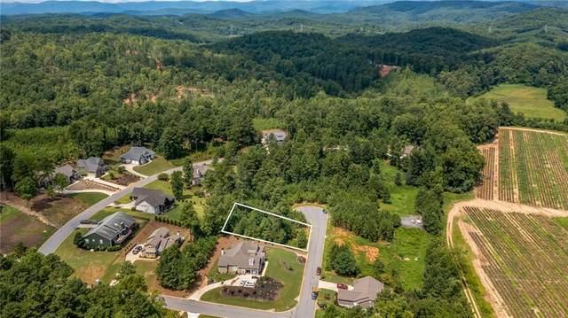 303 Wedge Way, Travelers Rest, SC 29690 (MLS #20242539) :: Les Walden Real Estate