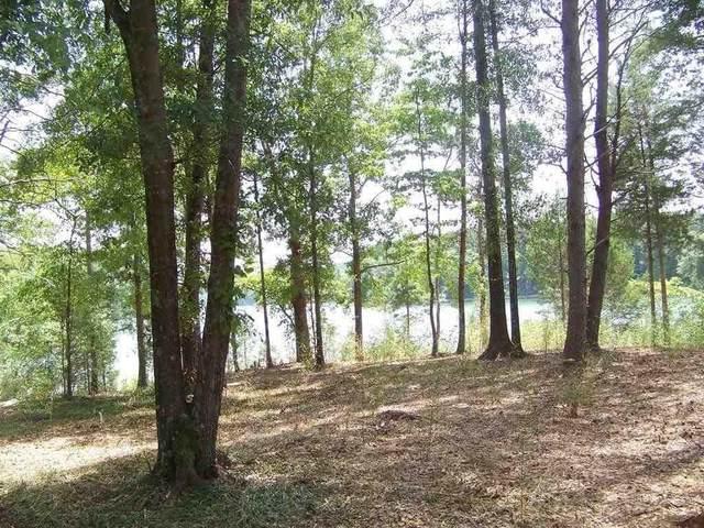 146 Island Water Drive, Six Mile, SC 29682 (MLS #20244202) :: Renade Helton