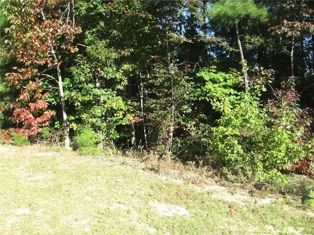 244 Jocassee Ridge Way, Salem, SC 29676 (MLS #20244476) :: Prime Realty